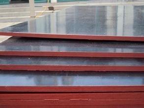 唐山柳桉面木胶板